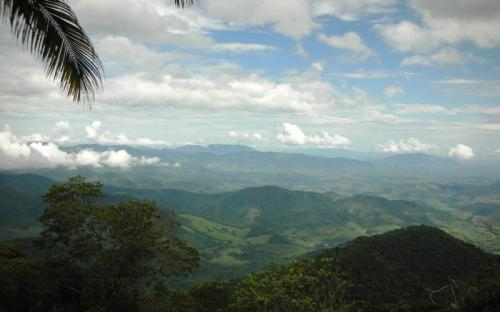 View from Red Trail at REGUA © Patricia Harvey