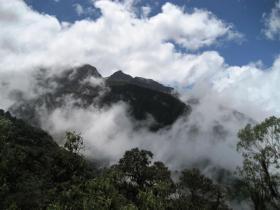 Yanacocha Reserve in Ecuador
