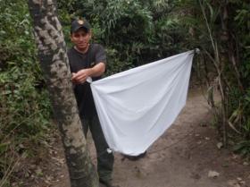 Edenilson - Ranger Guyra Paraguay
