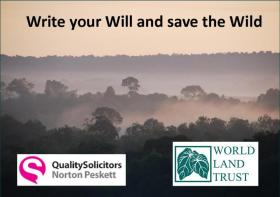 Write your Will and save the Wild