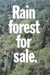 Rainforest for Sale