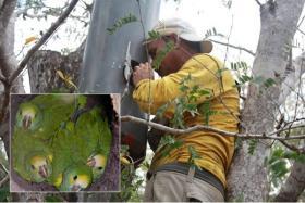Ranger Pablo Antonio Millán helps protect a nature reserve on Margarita Island, Venezuela