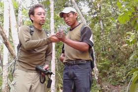 Ranger Ricardo helps protect a nature reserve in Guatemala