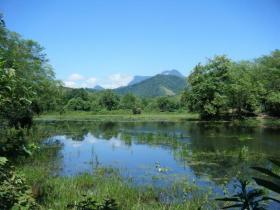 REGUA wetland