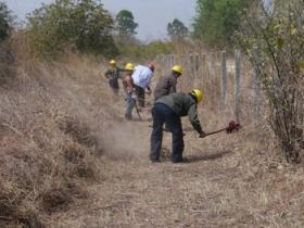 Rangers build a firebreak. © IUCN NL.