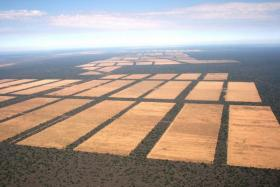 Aerial view of deforestation on a vast scale in the Dry Chaco region of Paraguay.