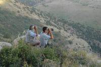FPWC's Hrach Ghazaryan and Manuk Manukyan spot Bezoar goats