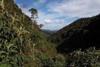Colibri de Sol Reserve
