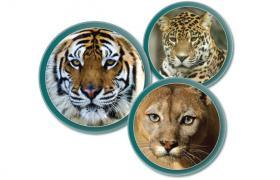 Images of Bengal Tiger, Jaguar and Puma.