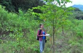 Former WLT staff member Rebecca Absalom monitoring tree planting in the Jorupe reserve ©  WLT